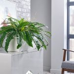 Office Artificial Plant Troughs